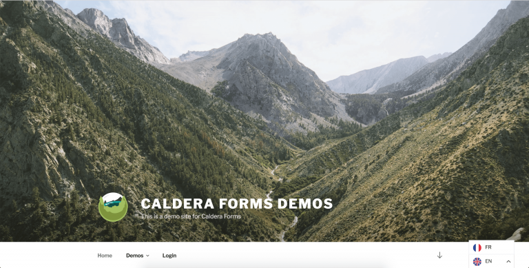 Caldera Forms translated